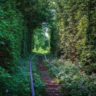 6391-10-le-tunnel-de-l-amour